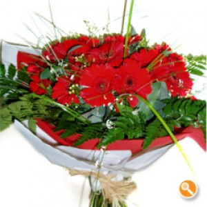 Bouquet de Gerberas Vermelhas - Red Fire