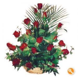 Cesto de rosas vermelhas - Cupido