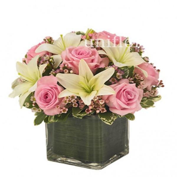 Cubo de Rosas Rosa